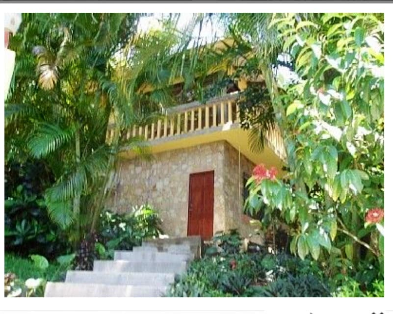Spacious 1 bed Jungle Villa w Pool!