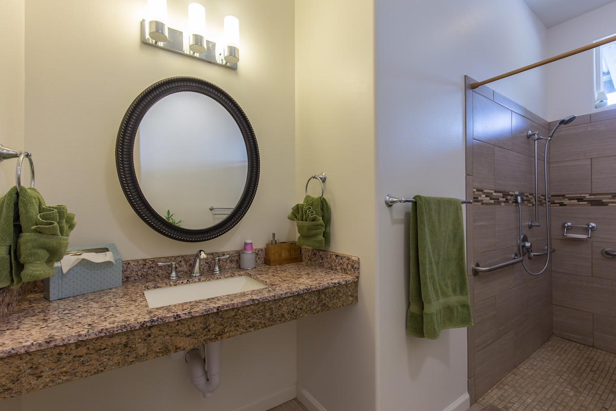 Granite counter with mirrored medicine cabinet and wheelchair accessible full shower