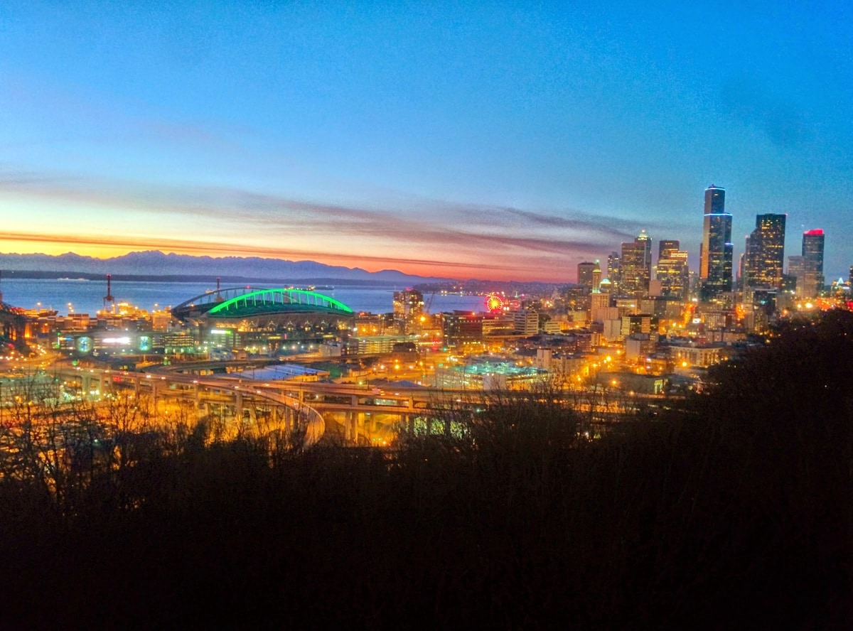 Best Seattle Views! Private Suite!