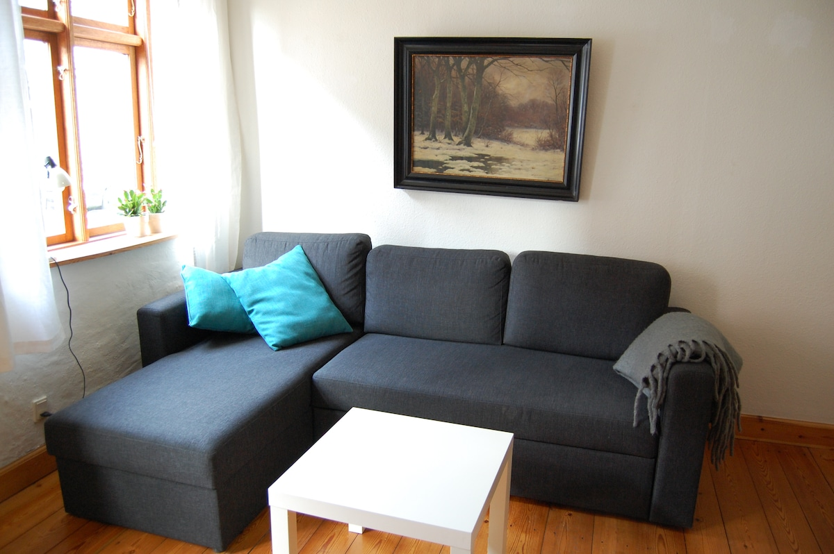 Big apartment in center of Odense.