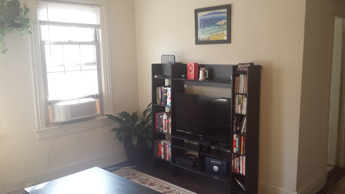 Sunny 1BR Apartment in Dupont