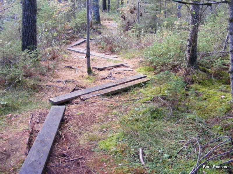 A path less traveled.