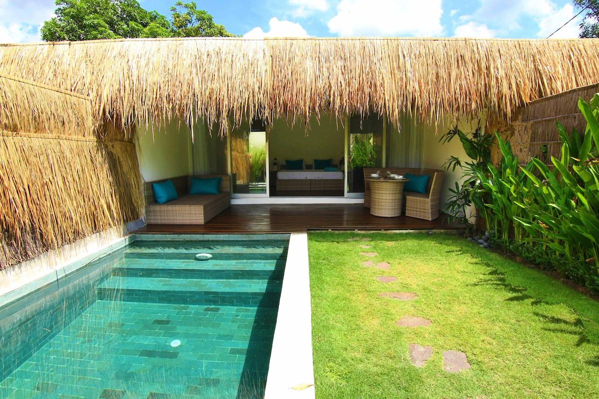 Tropical Suite Villa private pool 2
