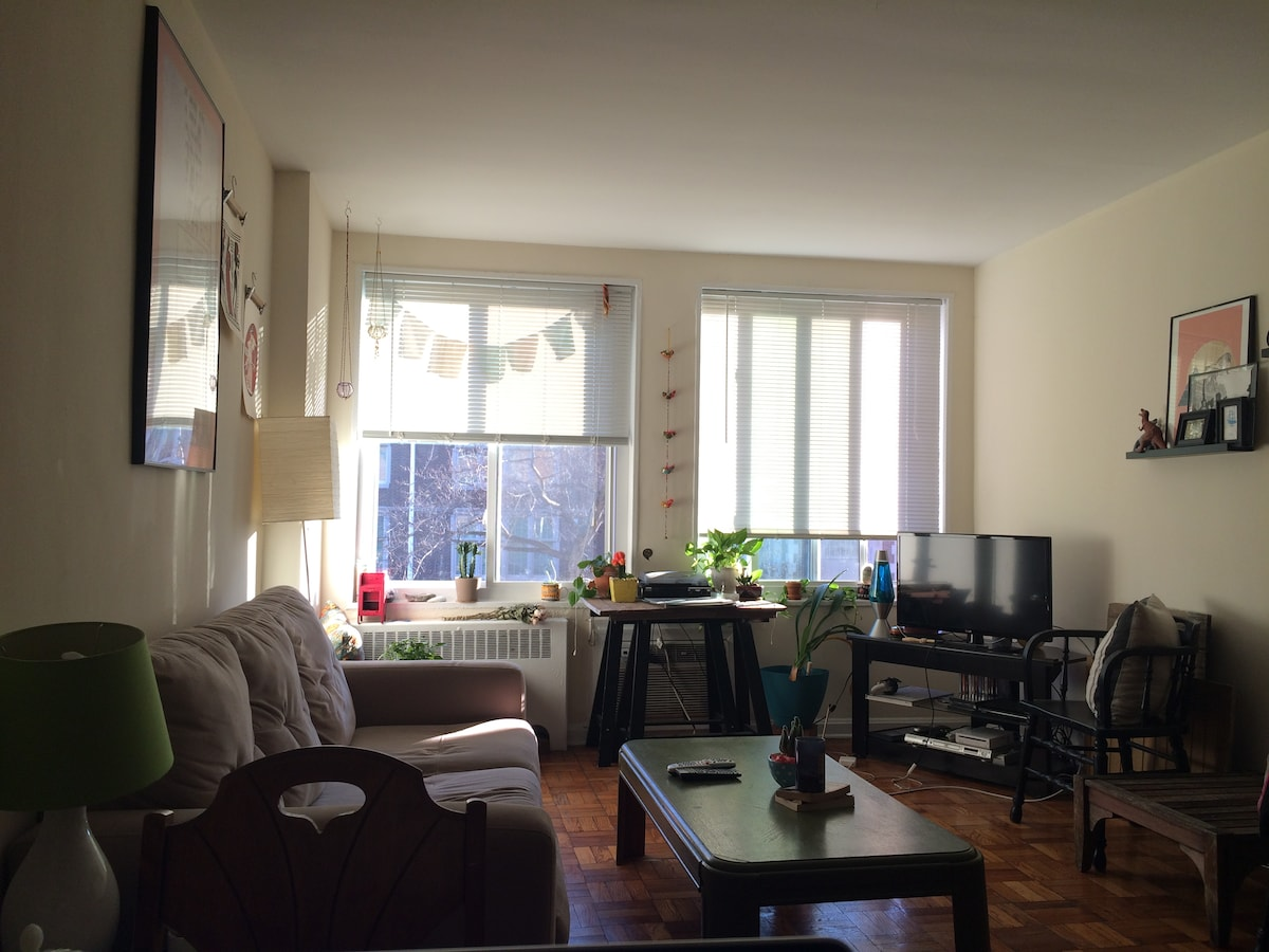 Sunny Apartment in Columbia Heights