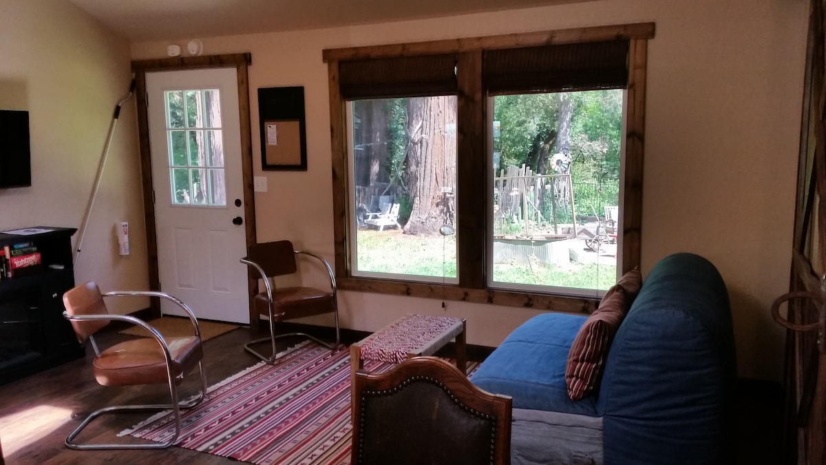 View of the redwood grove from the living area