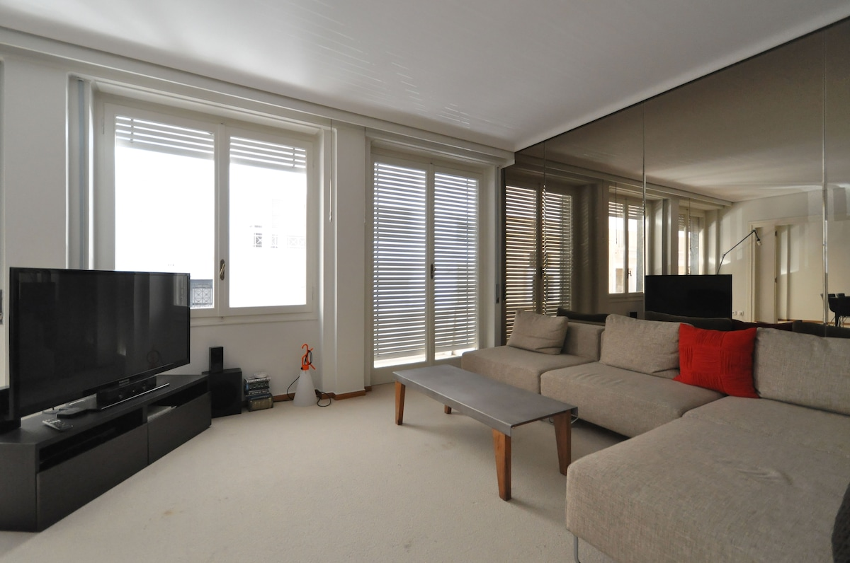 Luxury 100sqm 1 bedroom apartment