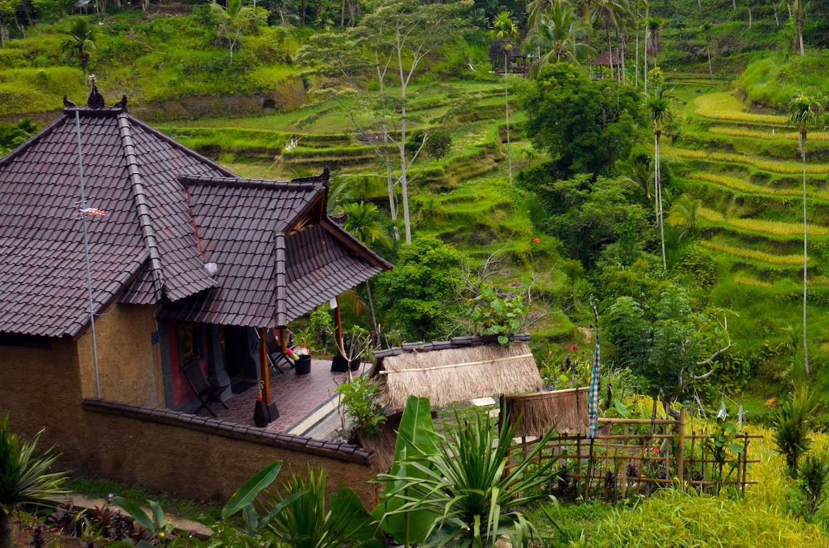 Romantic house on rice terrace