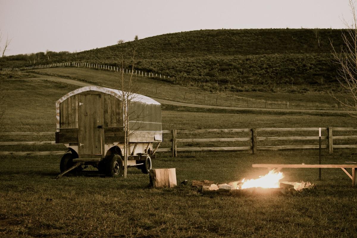 1930's Restored Sheepherders Wagon