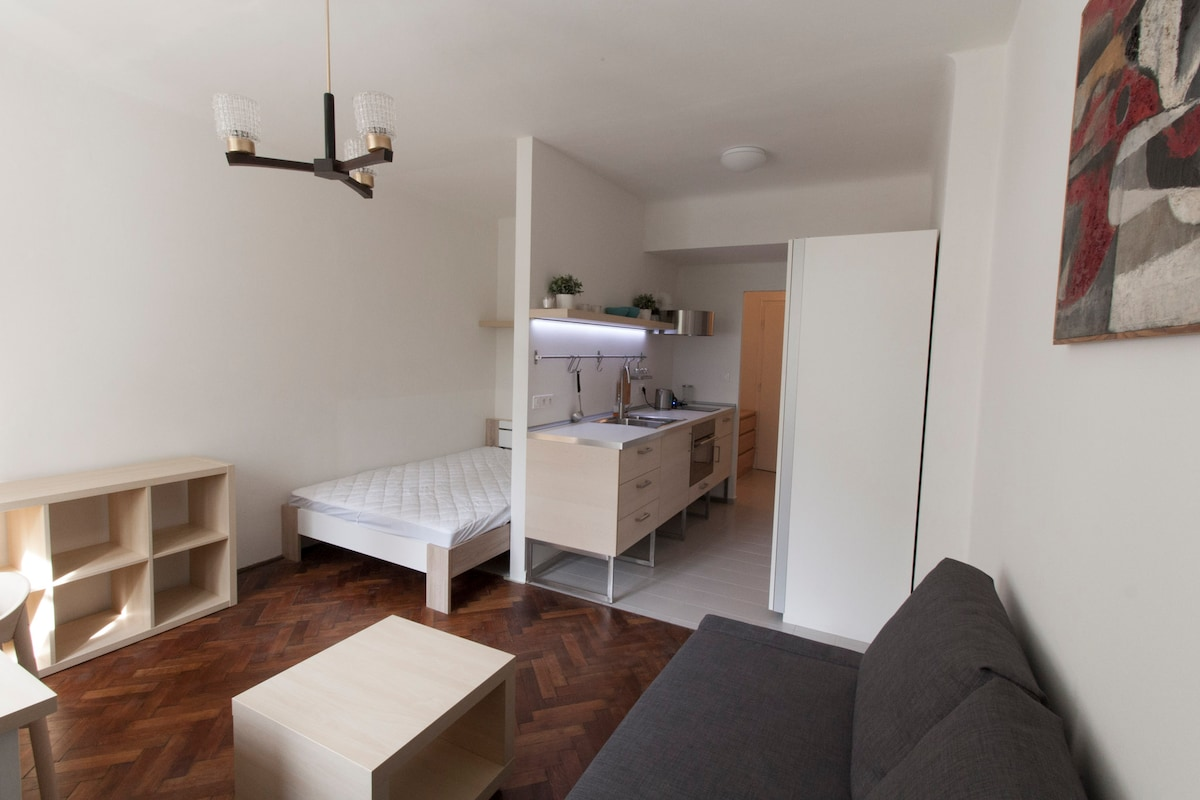 Newly furnished, modern apartment