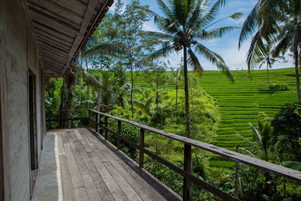 BeBaliStay, Spacious Eco Farm House
