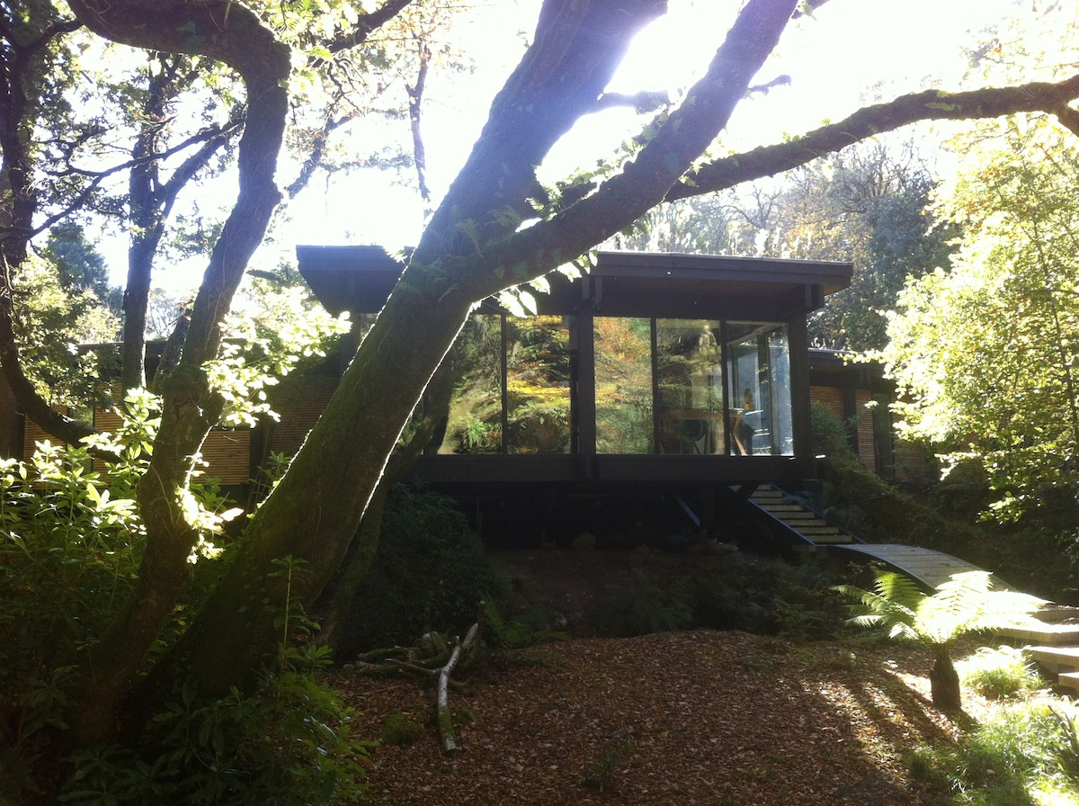 Koeschi - B&B in a unique eco home