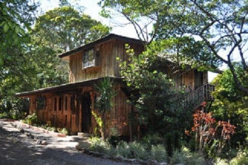 Treetop House - Charming Artistic