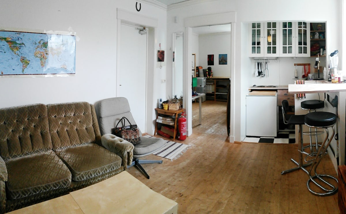 Affordable cozy apartment in 101