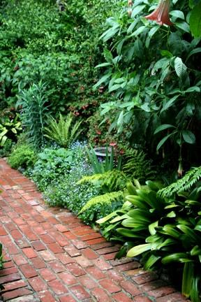 Secret Garden Room in Carmel
