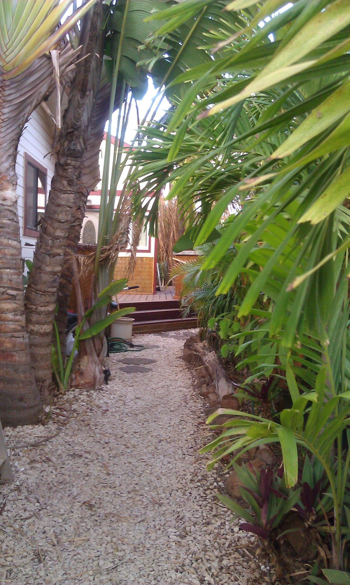 Private Tropically Landscaped grounds- this is your Private Entrance walkway.