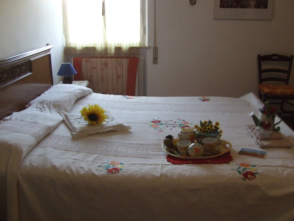 "Enjoy ""Sunflower dream"" in Spoleto!"