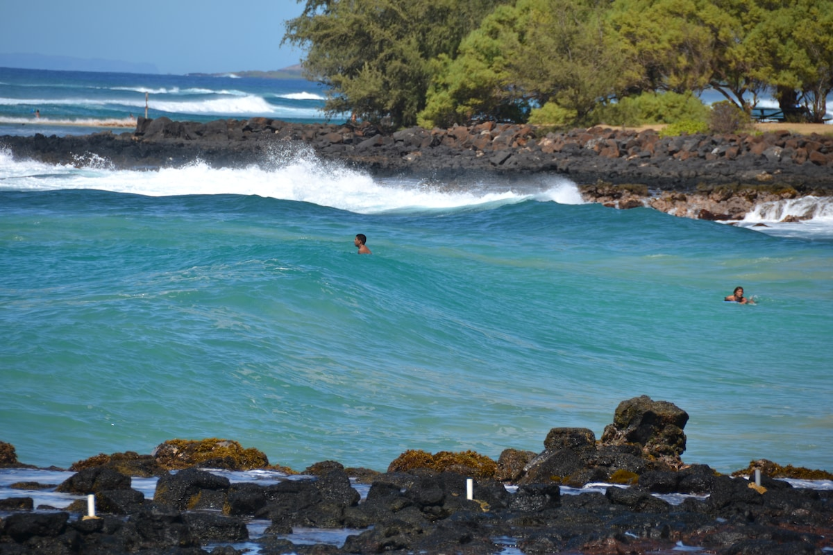 Fabulous Poipu Beach and great swimming and snorkeling!