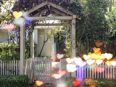 Craftsman home #1, tropical garden
