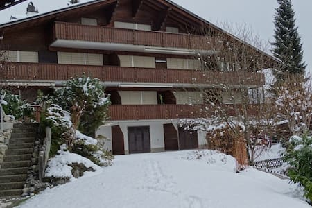Spacious 6-bed apartment/Ferienwohnung near Gstaad - Lejlighed