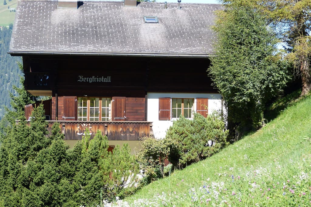 Fab Views! Cosy Traditional Swiss Wengen Apartment