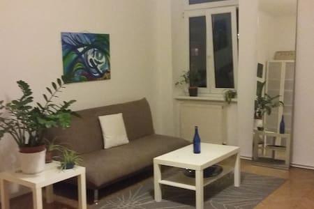 Gemütliche Wohnung direkt bei Ottakring Station - 维也纳 - 公寓