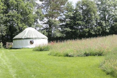 Denmark Farm Glamping Yurt - Lampeter - Tenda