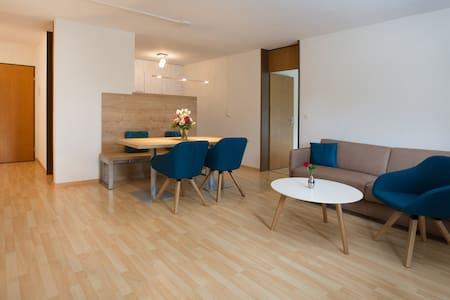 3 Zimmer Ferienwohnung 'l'aua' - Disentis/Mustér