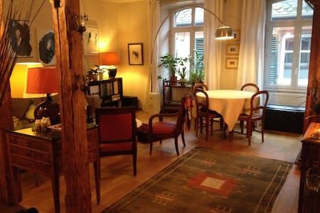 Les combles de Saverne - Saverne - Bed & Breakfast