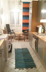 Room in cosy flat with garden - Vienne - Appartement