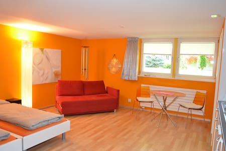 Wunderschönes Studio mit eigenem Eingang - Dornach - Apartment