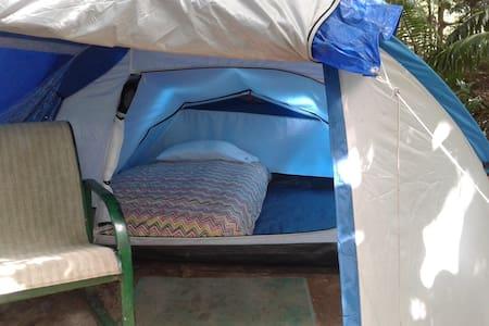 "Big Banana Campground ""Jazz"" - Soufriere"
