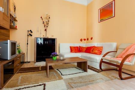 Cozy apartment close to city center - Condominium