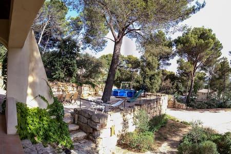 Villa du Bonheur en Provence ! - Laudun-l'Ardoise