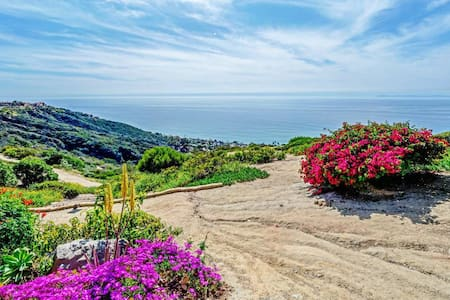 Master Suite near Laguna and Dana Point - 公寓