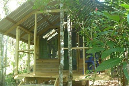 Moonracer Farm:  Cohune Camping Casita Room 5 - San Ignacio - Cabane