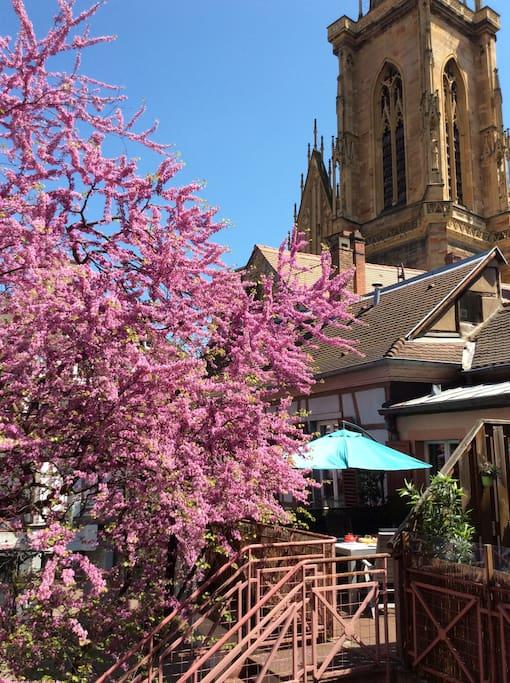 La terrasse privative avec vue sur la Cathédrale