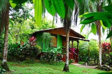 Caribbean House - Rumah