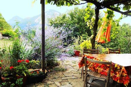 Chambre d'hôte au Pays cathare - Cassaignes - Bed & Breakfast