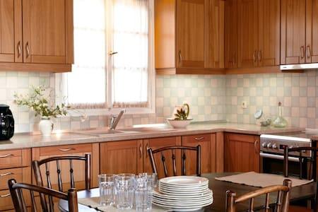 Liotrivi Family House - Βολισσός - Kondominium