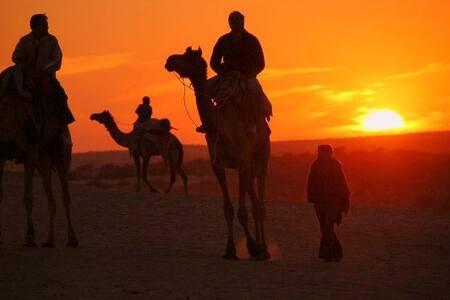 Rajasthan-Khuri Desert Tent B&B Accommodation - Tent