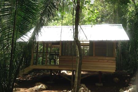 Moonracer Farm:  Cohune Camping Casita Room 3 - Cabane