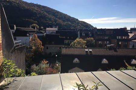 Über dem Neckar - Heidelberg - Lejlighed