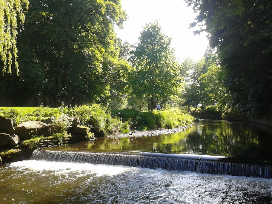 """Situated by the riverside """"Dodder Greenway"""" cycle track and running route - regarded as """"among the finest city rivers in Europe"""""""