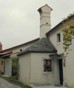 Valetovi 1 - House