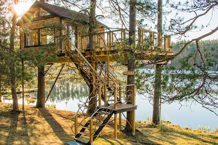 Treehouse Čiekurs(cone) by the lake. - Treehouse