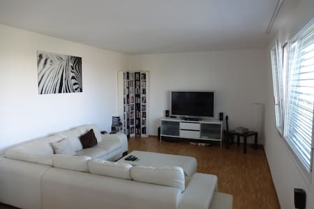 Private room and free usage of 145m2 big apartment - Zürich