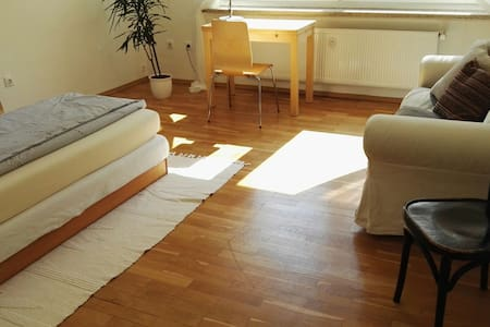 Spacious romantic room 10 min. walk to campus&city - Pis