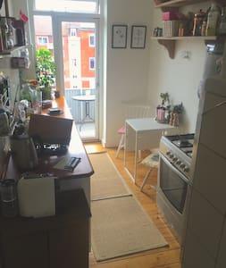 Stort værelse med flot udsigt tæt på centrum - København - Apartment