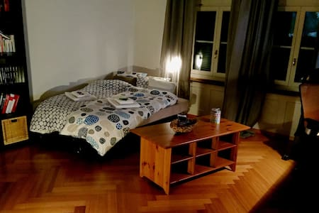 Nice large room in city center