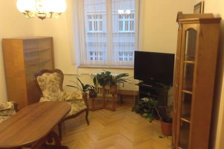Prostorný byt k pronájmu - Karlovy Vary - Lägenhet